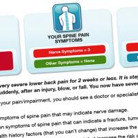 Back & Neck Pain Assessment