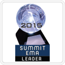 Summit Emerging Media Award (Leader)